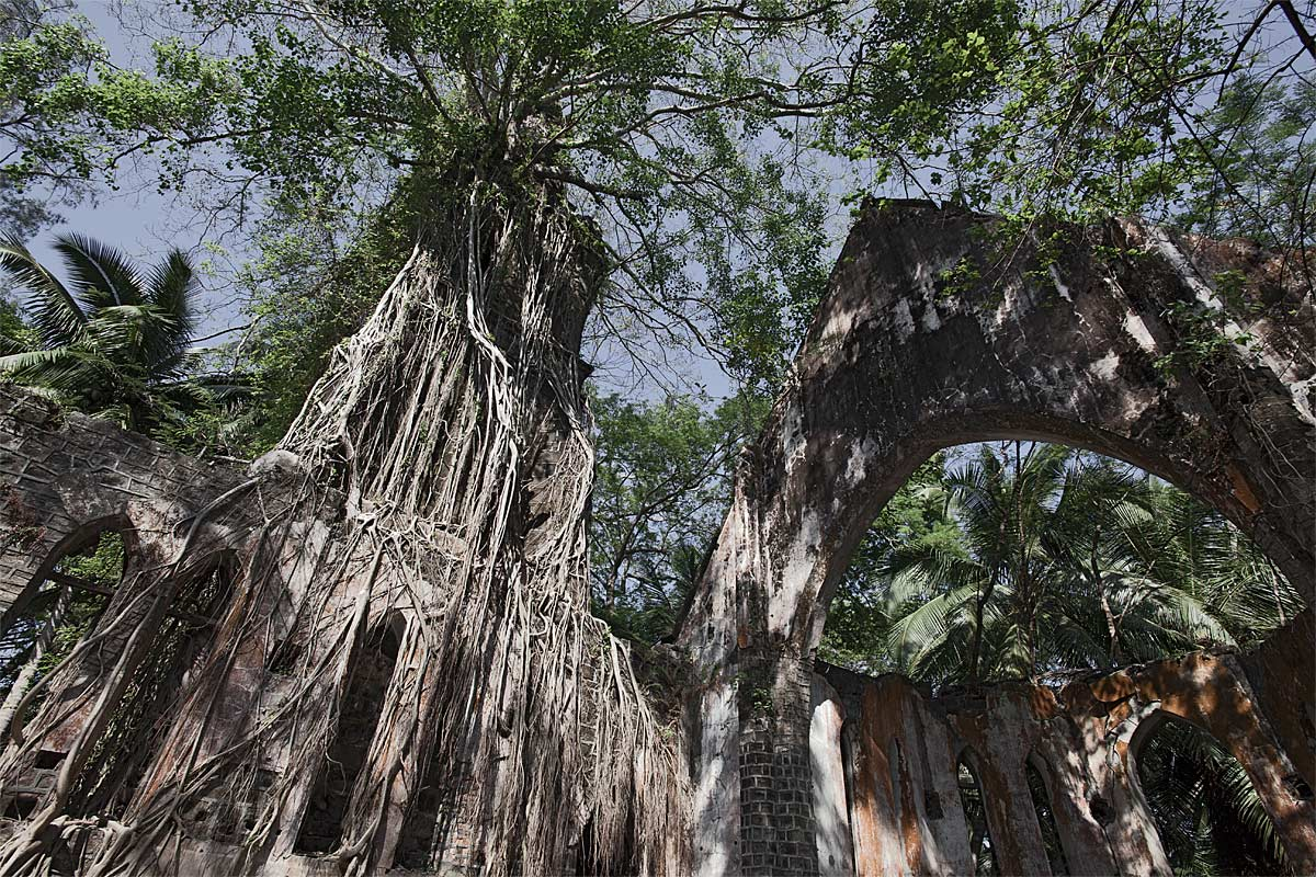 gods of the jungle, faithless #5, india, 2012 (built by the britsh on ross island in the andaman sea it was destroyed by an earthquake in 1941. never rebuilt as the hq was moved to port blair)
