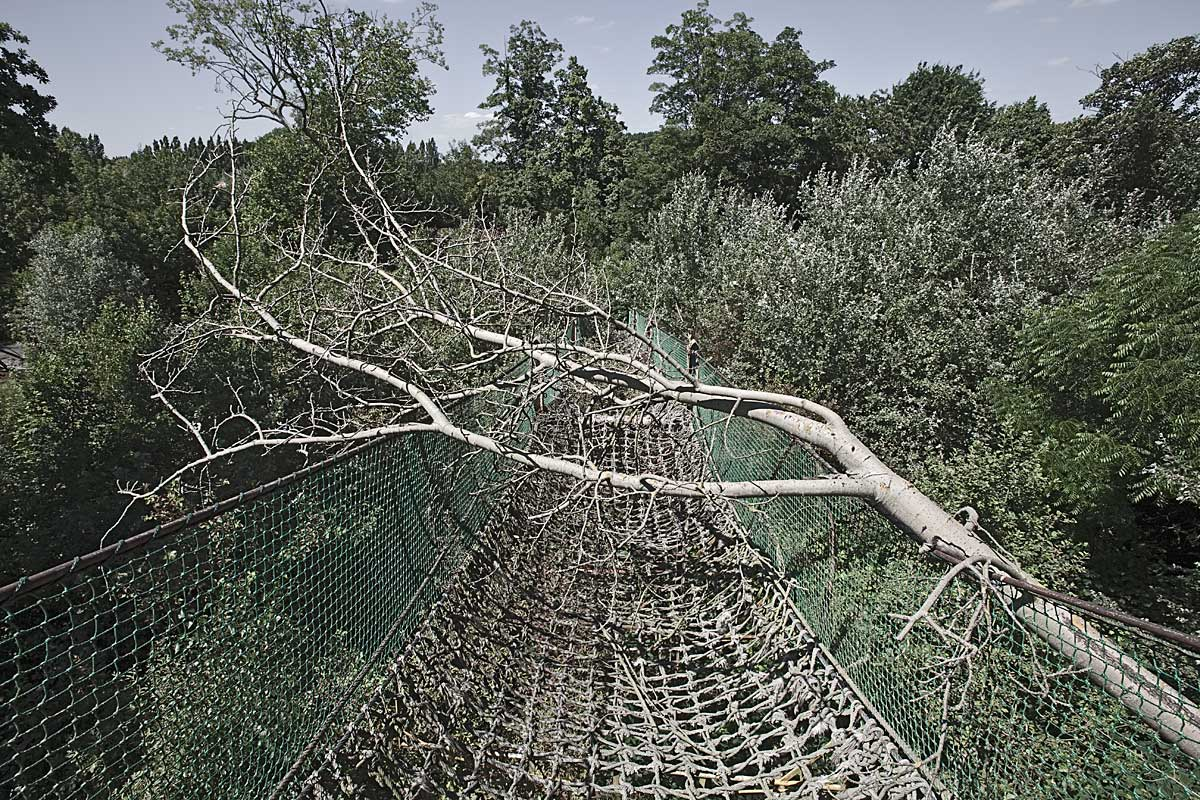 it was a pleasure #24, belgium, 2010 (rope bridge in dadiland that open in 1949 and closed in 2003)